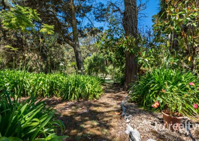 779 Chesterpass Road, Wilyung (52 of 116)