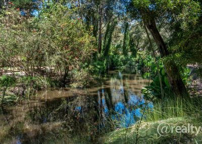 779 Chesterpass Road, Wilyung (80 of 116)