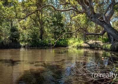 779 Chesterpass Road, Wilyung (83 of 116)