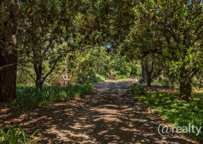 779 Chesterpass Road, Wilyung (96 of 116)