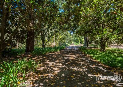 779 Chesterpass Road, Wilyung (97 of 116)